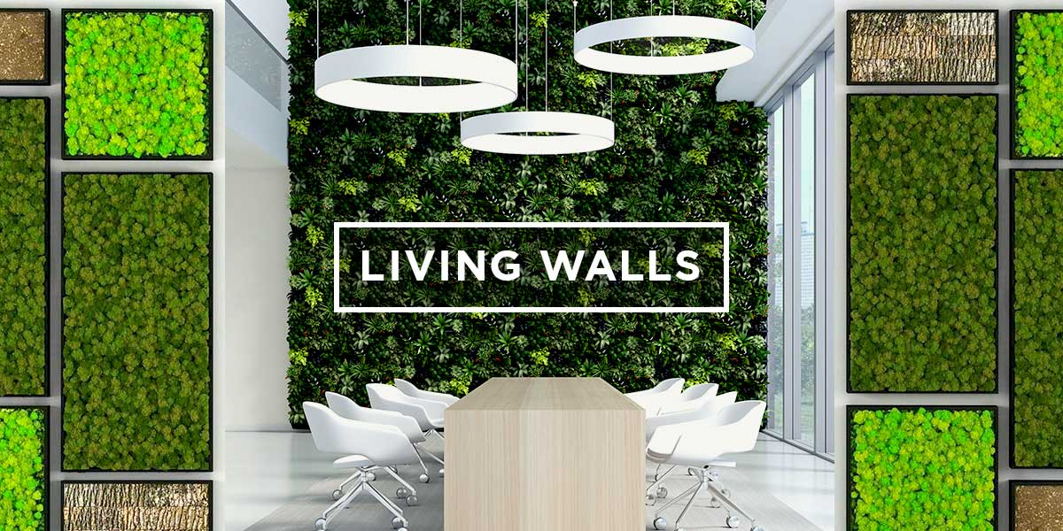 Bio Canvas And Leaf Living Walls For Your Office